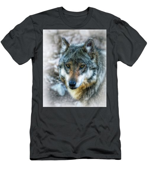 Wolf Gaze Men's T-Shirt (Slim Fit) by Elaine Malott