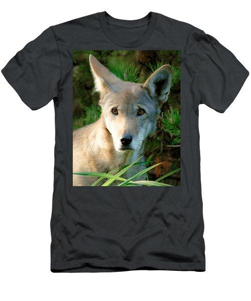 Wolf Pup Men's T-Shirt (Athletic Fit)