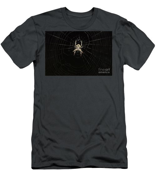 Wolf Spider And Web Men's T-Shirt (Slim Fit) by Mark McReynolds