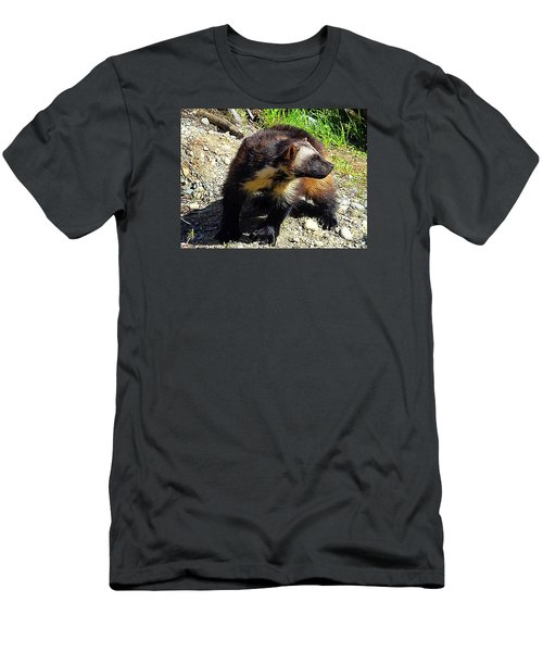 Men's T-Shirt (Slim Fit) featuring the photograph Wolverine Wilderness by Kathy Kelly