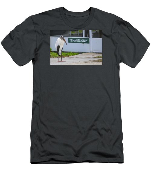 Wood Stork  Men's T-Shirt (Athletic Fit)
