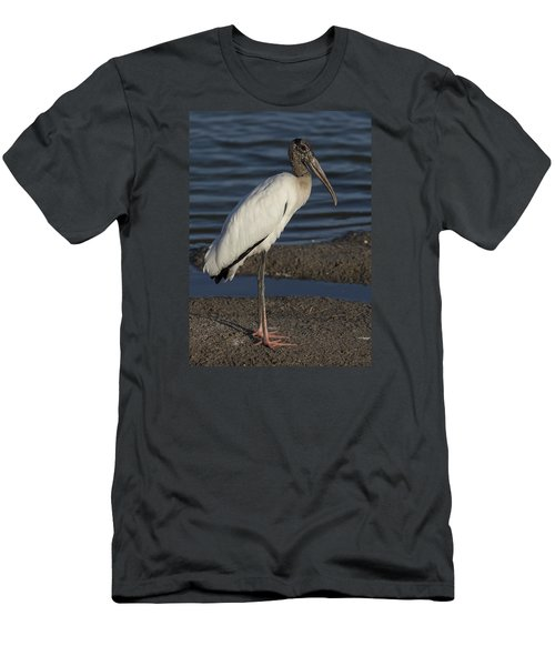 Wood Stork In The Final Light Of Day Men's T-Shirt (Athletic Fit)