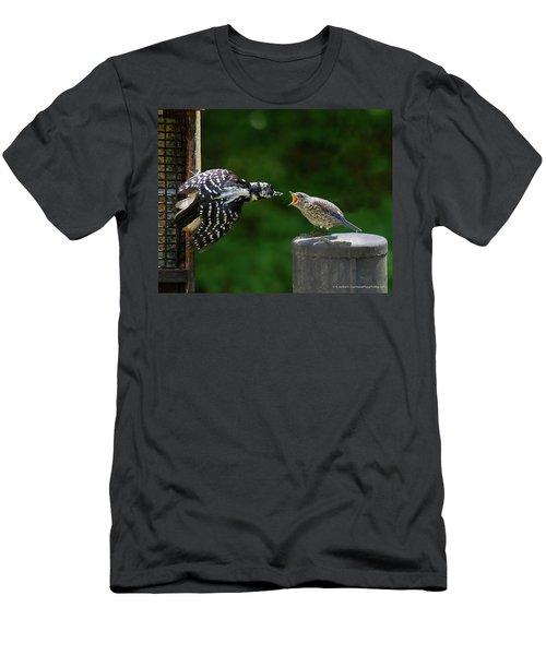 Woodpecker Feeding Bluebird Men's T-Shirt (Slim Fit) by Robert L Jackson