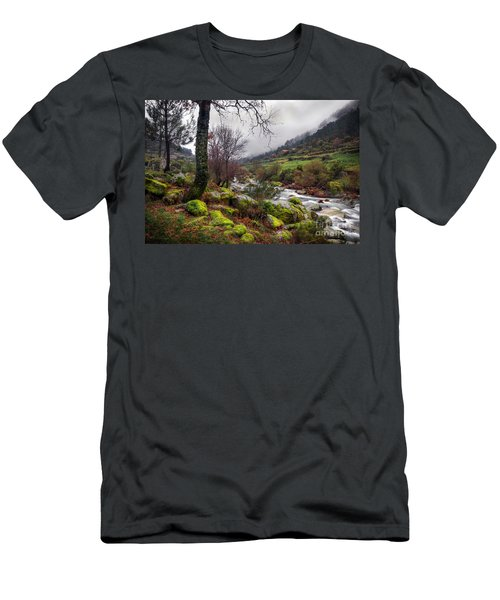Woods Landscape Men's T-Shirt (Athletic Fit)