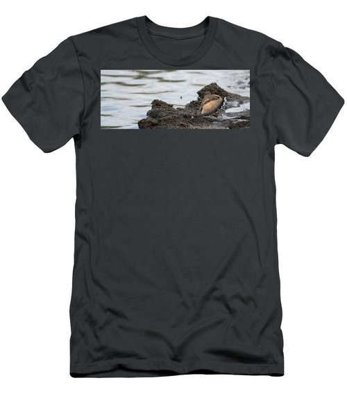 Wounded Wing Men's T-Shirt (Athletic Fit)