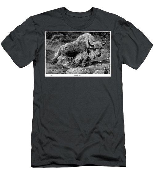 YAK Men's T-Shirt (Athletic Fit)