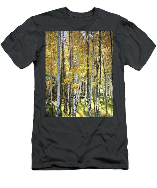 Yellow Aspens Men's T-Shirt (Athletic Fit)