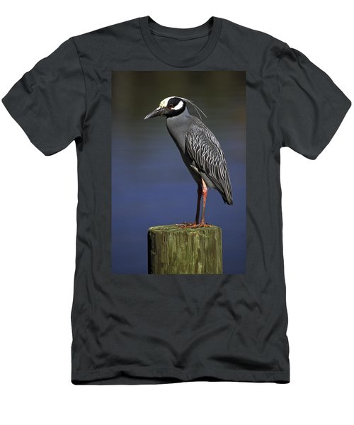 Men's T-Shirt (Slim Fit) featuring the photograph Yellow-crowned Night Heron by Sally Weigand
