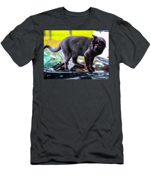 Men's T-Shirt (Slim Fit) featuring the photograph Yellow Eyed Cat by Madeline Ellis
