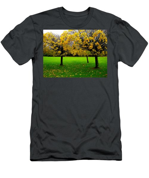 Yellow Leaves At Muckross Gardens Killarney Men's T-Shirt (Athletic Fit)