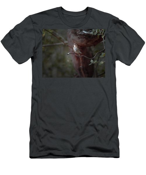 Yellow-rumped Warbler At Water Spout Men's T-Shirt (Slim Fit) by Debra Martz