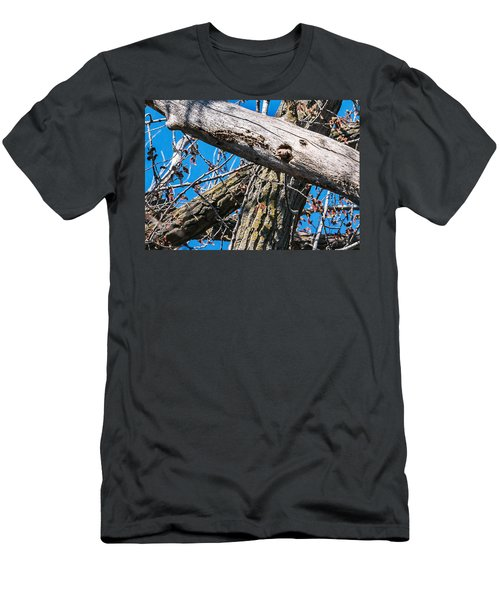 Men's T-Shirt (Slim Fit) featuring the photograph Yellow-shafted Northern Flicker Nest Building by Edward Peterson