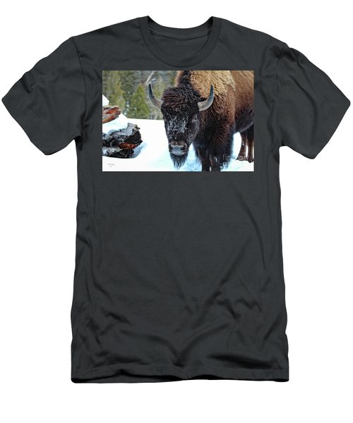 Yellowstone Buffalo Stare-down Men's T-Shirt (Athletic Fit)