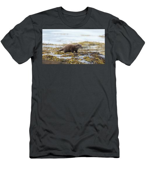 Young Otter Men's T-Shirt (Athletic Fit)