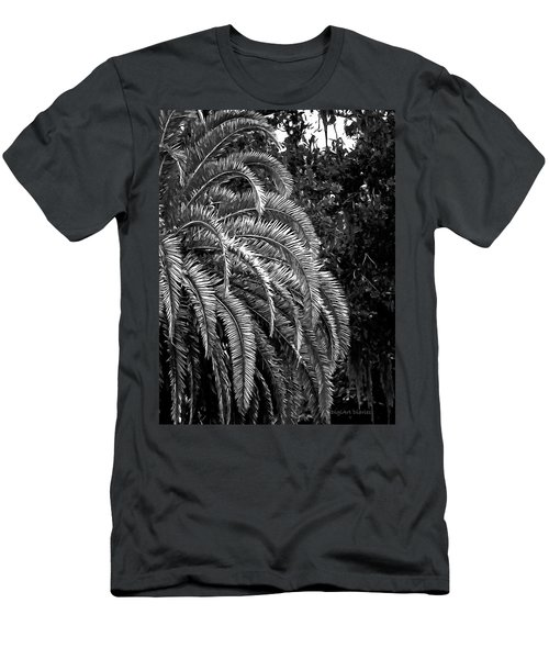 Men's T-Shirt (Slim Fit) featuring the photograph Zebra Palm by DigiArt Diaries by Vicky B Fuller