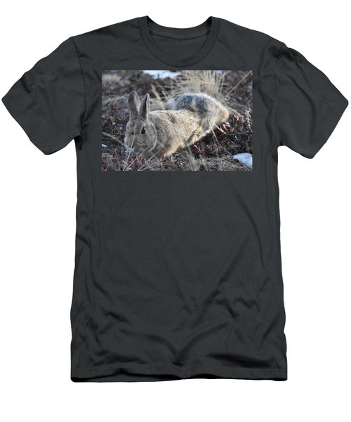 Men's T-Shirt (Athletic Fit) featuring the photograph 02-27-18 Rabbit by Margarethe Binkley