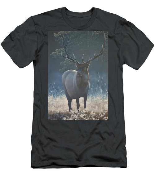 First Light - Bull Elk Men's T-Shirt (Athletic Fit)