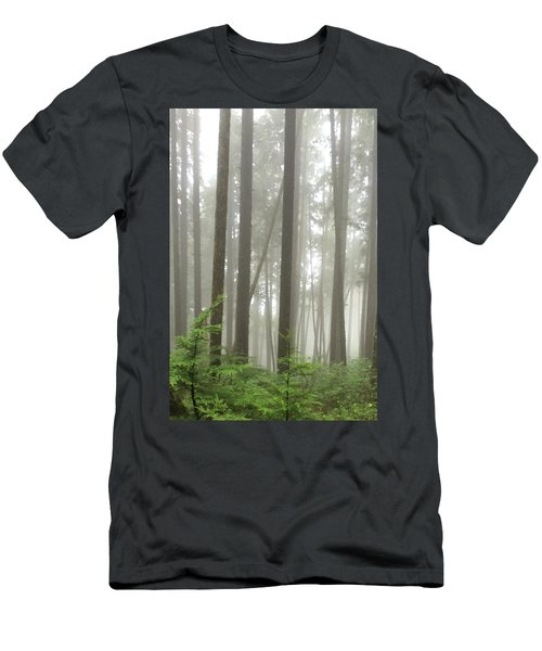 Foggy Forest Men's T-Shirt (Athletic Fit)