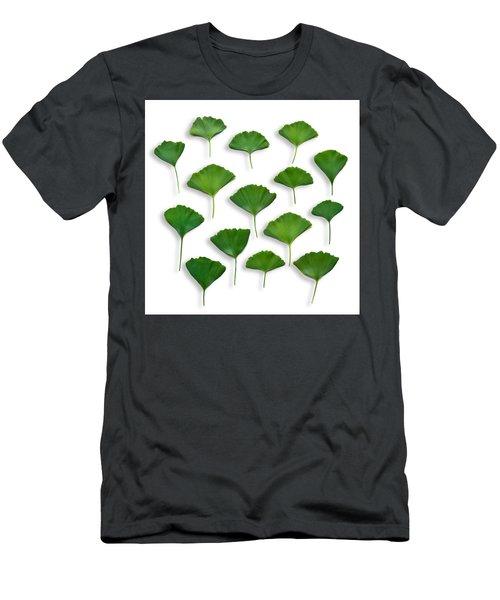 Gingkos Spring Men's T-Shirt (Athletic Fit)