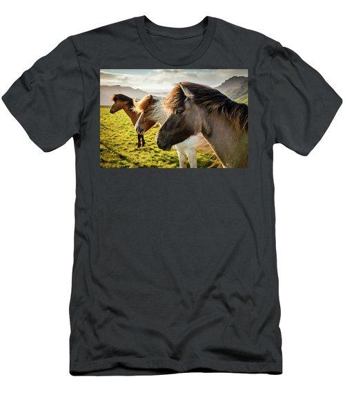 Icelandic Horses Men's T-Shirt (Athletic Fit)