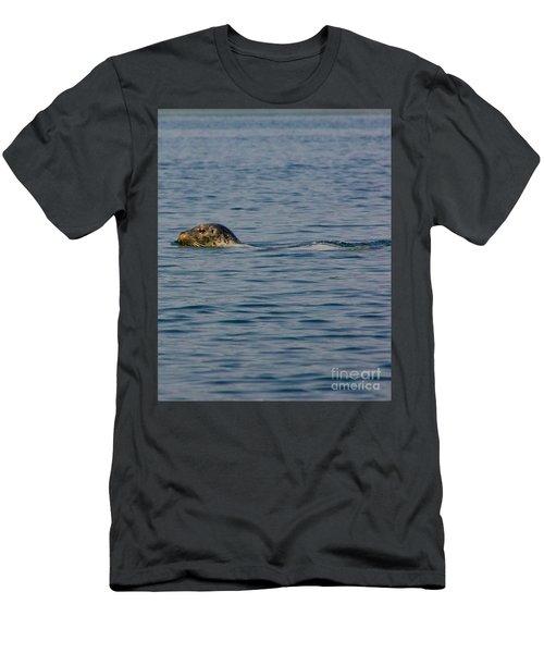 Pacific Harbor Seal Men's T-Shirt (Athletic Fit)