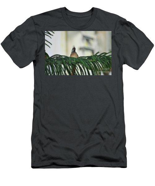Speckled Mousebird  Men's T-Shirt (Athletic Fit)