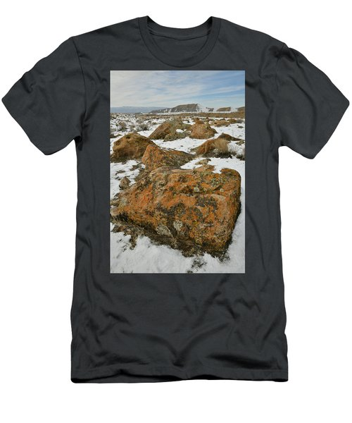 The Many Colors Of The Book Cliffs Men's T-Shirt (Athletic Fit)
