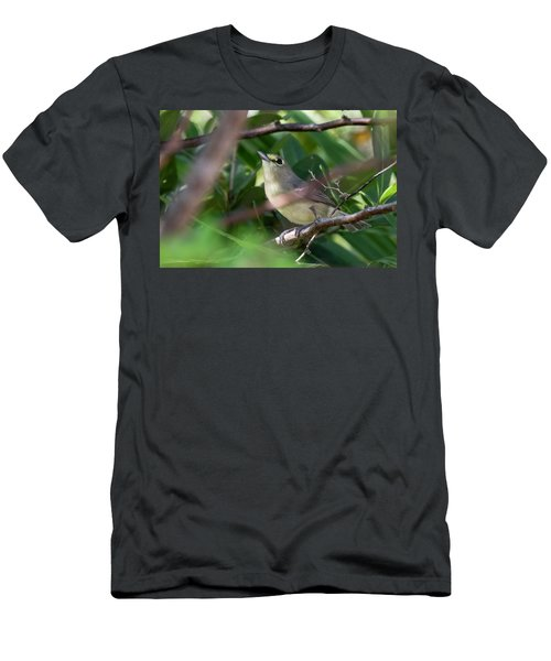 Thick-billed Vireo Men's T-Shirt (Athletic Fit)