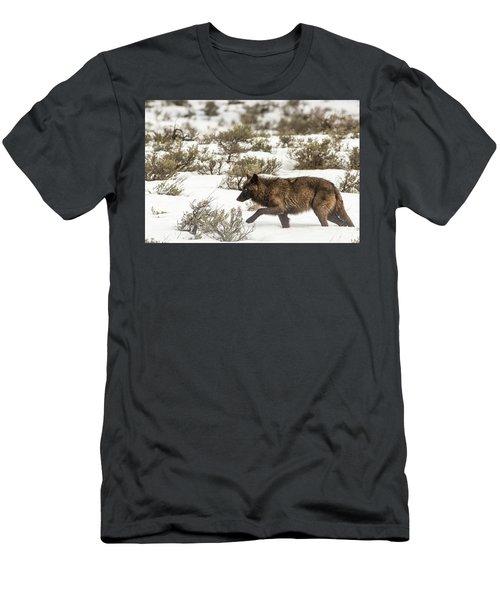 W3 Men's T-Shirt (Athletic Fit)