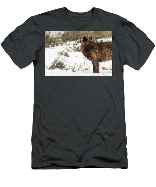 W6 Men's T-Shirt (Athletic Fit)
