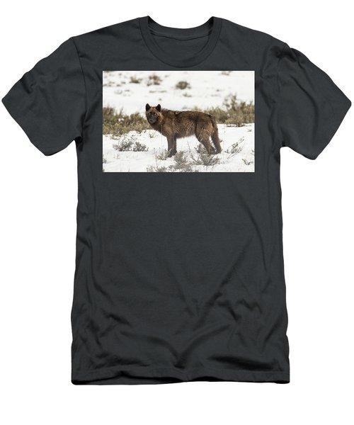 W8 Men's T-Shirt (Athletic Fit)
