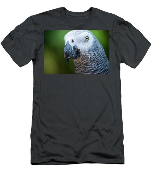Men's T-Shirt (Athletic Fit) featuring the photograph African Grey Parrot by Rob D Imagery