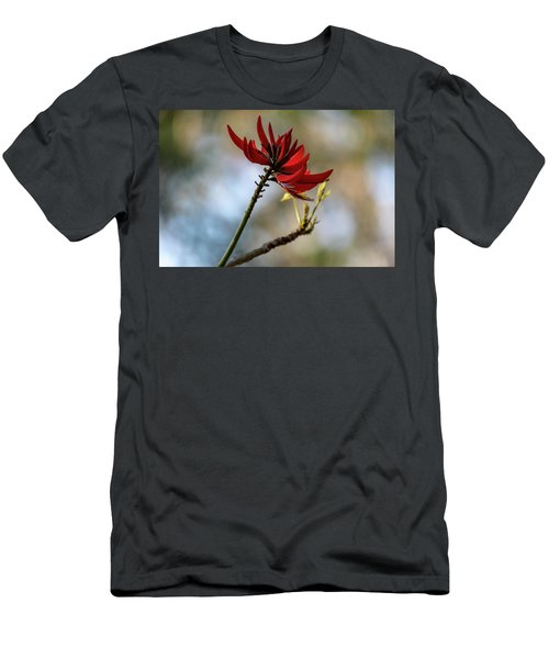 Coral Tree Flowers Men's T-Shirt (Athletic Fit)