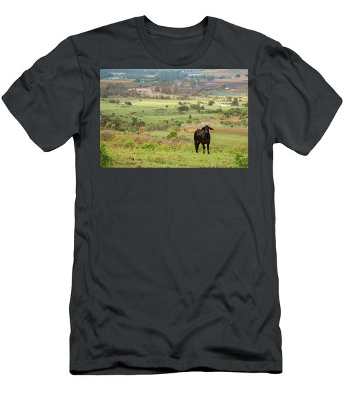 Men's T-Shirt (Athletic Fit) featuring the photograph Cow Outside In The Paddock by Rob D Imagery