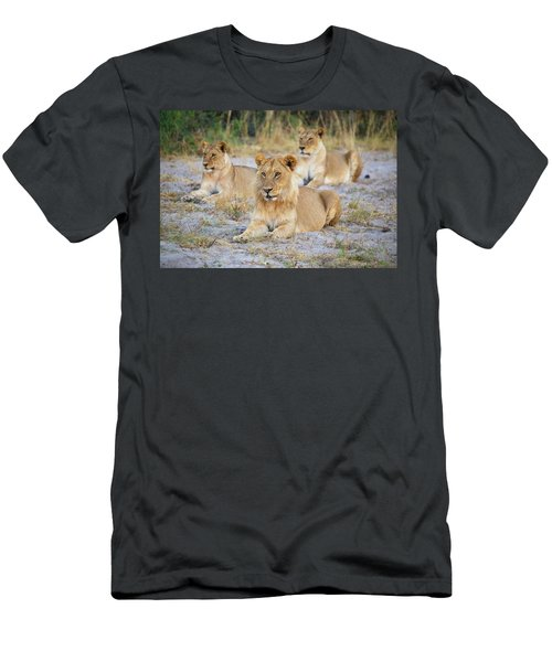 Men's T-Shirt (Athletic Fit) featuring the photograph 3 Lions by John Rodrigues