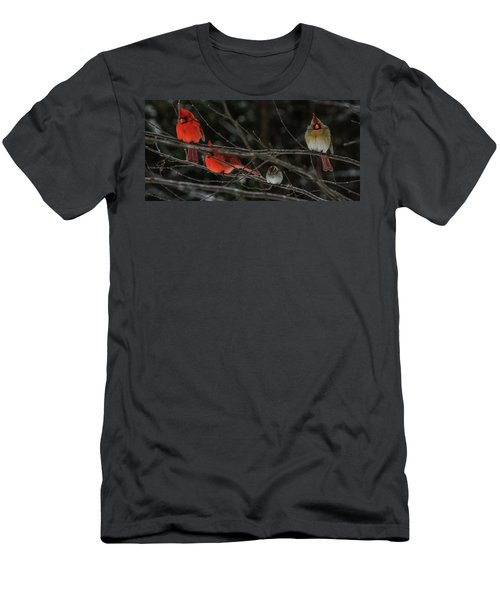 3cardinals And A Sparrow Men's T-Shirt (Athletic Fit)