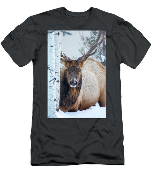 4 Wire Winter  Men's T-Shirt (Athletic Fit)