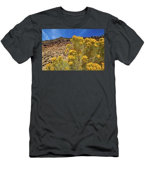 Idaho Landscape Men's T-Shirt (Athletic Fit)