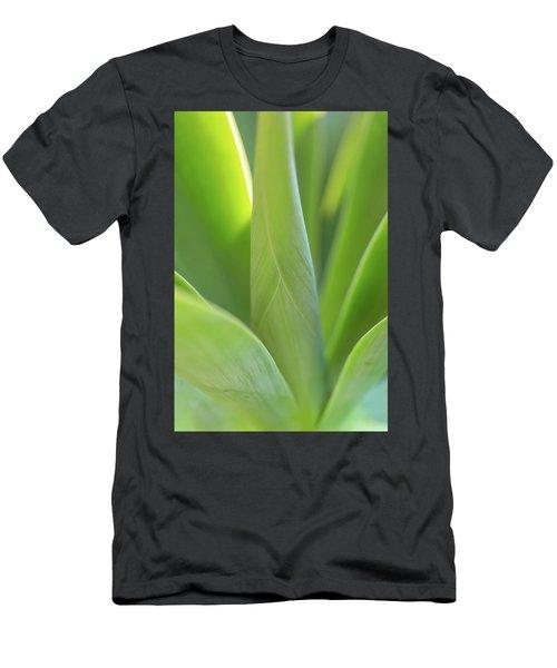 A Bouquet Of Leaves Men's T-Shirt (Athletic Fit)