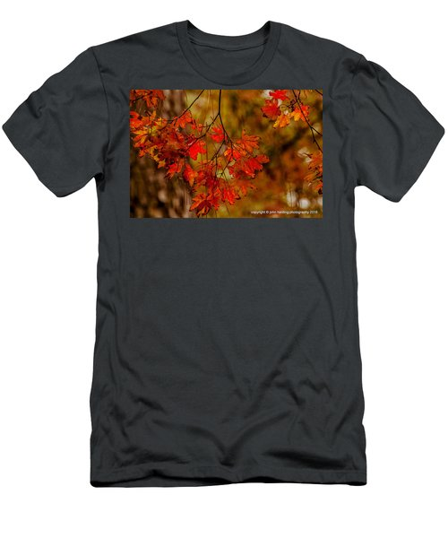 A Branch Of Autumn Men's T-Shirt (Athletic Fit)