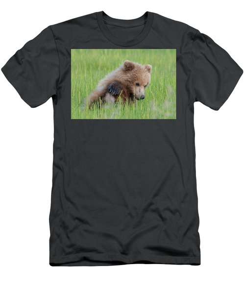A Coy Cub Men's T-Shirt (Athletic Fit)