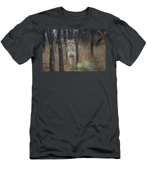 A Lioness In The Trees Men's T-Shirt (Athletic Fit)