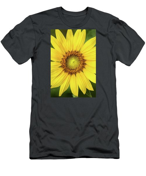 A Perfect Sunflower Men's T-Shirt (Athletic Fit)
