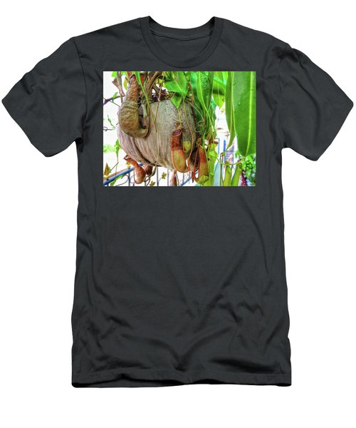 A Pitcher Plant On Our Terrace In Thailand Men's T-Shirt (Athletic Fit)