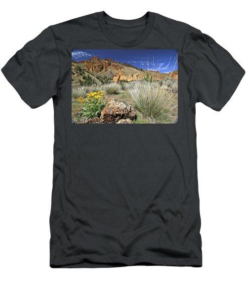 Above Juniper Gulch Men's T-Shirt (Athletic Fit)