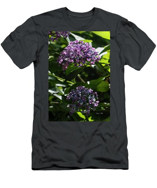Afternoon Garden View Men's T-Shirt (Athletic Fit)