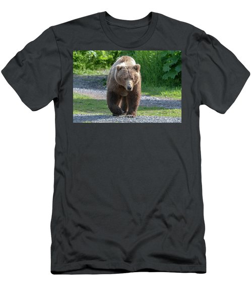 Alaskan Brown Bear Walking Towards You Men's T-Shirt (Athletic Fit)