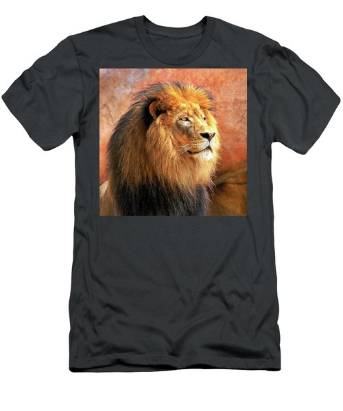 Alpha Male Lion Men's T-Shirt (Athletic Fit)