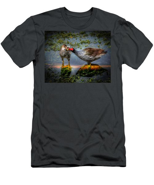 American Coot Men's T-Shirt (Athletic Fit)