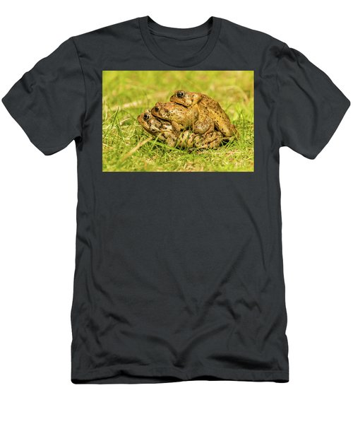American Toad Western Brooke Pond, Grose M Men's T-Shirt (Athletic Fit)